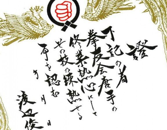 Seishinjuku Karate Dojo Brisbane Grading certificate